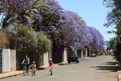 In bicicletta per le vie di Asmara